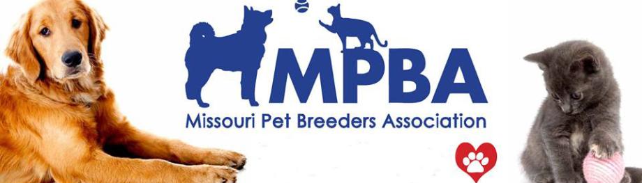 Missouri Pet Breeders Association - Varying Trotting Styles